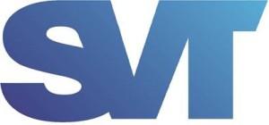 СВЕТОТРОНИКА-лого